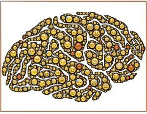 brain-954816_1920
